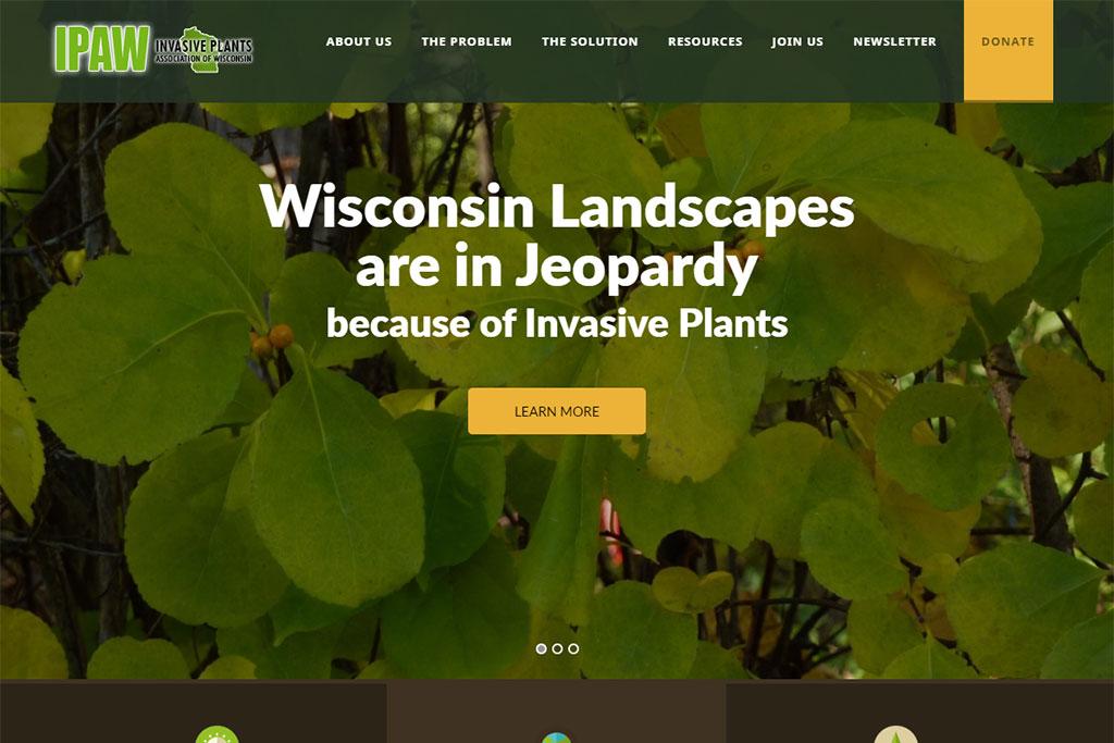 IPAW Website